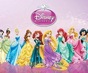 Disney Princess Snow White Cinderella Aurora Ariel Belle Jasmine Pocahontas Mulan Tiana Rapunzel Merida Edible Image Photo 1/4 Quarter Sheet Cake Topper Personalized Custom Customized Birthday Party
